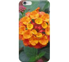 Little Petals iPhone Case/Skin