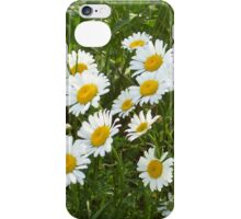 iPhone Accessories--iPhone Skin--Wildflowers iPhone Case/Skin