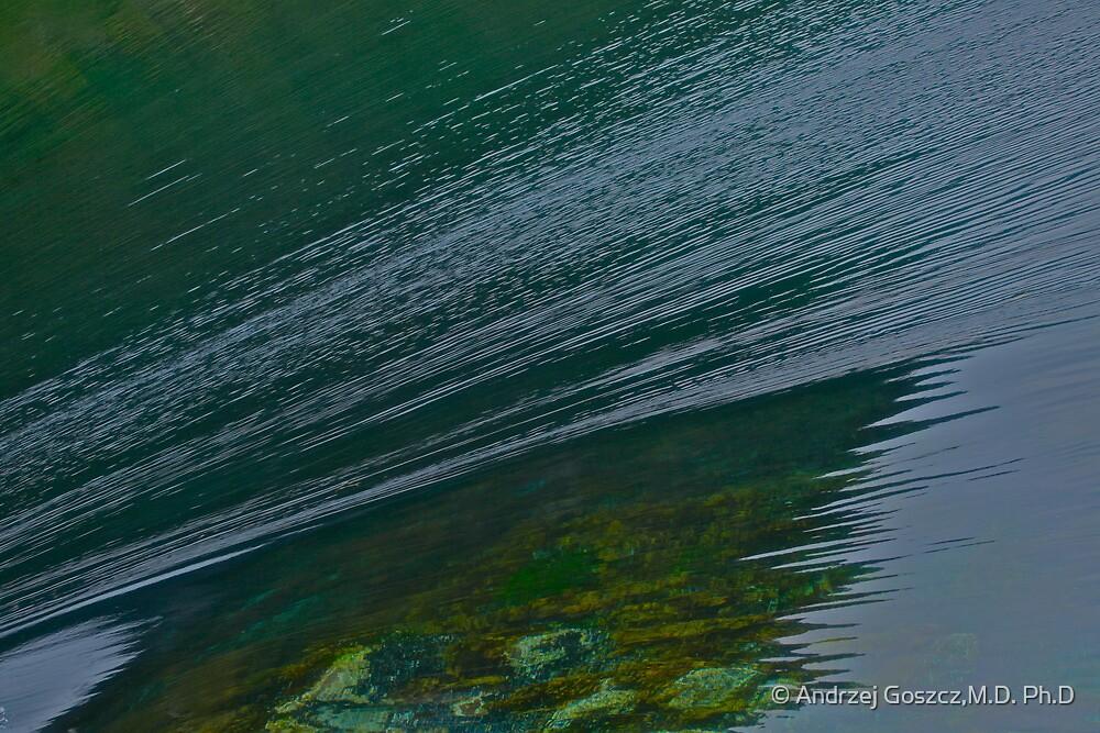 Forces & wonders of sea water turbulency . No.3 . Norway wonders - straumen. by Brown Sugar.  by © Andrzej Goszcz,M.D. Ph.D
