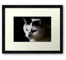 Fabulous Mr Stampy Framed Print