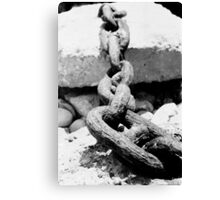 Lyme Chain 01 Canvas Print