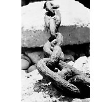 Lyme Chain 01 Photographic Print