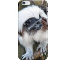 Cotton-top Tamarin iPhone Case/Skin