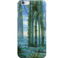 Cathedrals ~ iPhone case iPhone Case/Skin