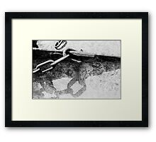 Lyme Chain 02 Framed Print