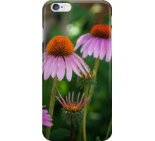 Cone Flowers - iPhone Case iPhone Case/Skin