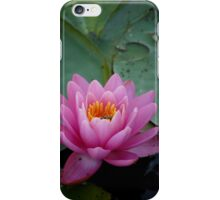 Pink Waterlily - iPhone Case iPhone Case/Skin