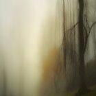 Fog Series: Road in Fog by Mary Ann Reilly