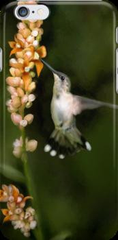 Hummingbird Art - Designer iPhone 4-4S Case by Renee Dawson