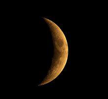 Luna by Walter Quirtmair