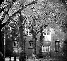 Leiden, Early Autumn by Giulio Menna
