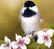 Apple Blossom Chickadee - Designer iPhone 4-4S Case by Renee Dawson