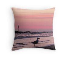 """A sign, a bird, 2 boats ~ & """"pink!"""" :D Throw Pillow"""