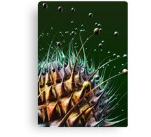 Fantasy macro world Canvas Print