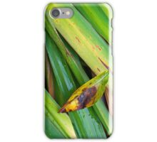 iPhone Case - Autumnal Withering iPhone Case/Skin