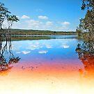 Brown Lake - North Stradbroke Island Qld Australia by Beth  Wode
