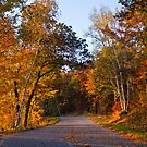 Minnesota Backroad by Mitchell Tillison