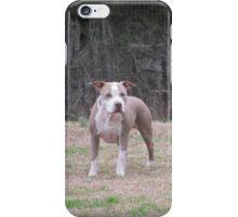 APBT iPhone Case - Buster iPhone Case/Skin