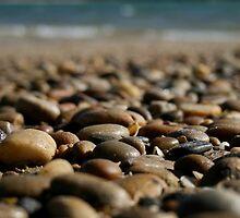 Pebble Beach by Susan Segal