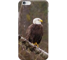 Skagit River Bald Eagle (Medium) iPhone case. iPhone Case/Skin