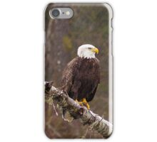 Skagit River Bald Eagle (Medium) iPhone case. iPhone Case/Skin