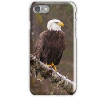 Skagit River Bald Eagle (Large) iPhone case. iPhone Case/Skin