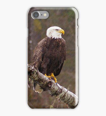Skagit River Bald Eagle (Large) iPhone case. iPhone Case/Skin