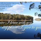 Peace I leave with you by Catherine Davis