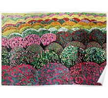 Sea of Chrysanthemums Poster