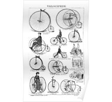 Bicycle Vintage High Wheeler Victorian Penny Farthing Cycle Biking		 Poster