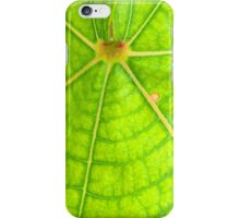 Green Leaf iPhone Case/Skin