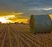 All Baled up....Oaten Hay. by mitpjenkeating