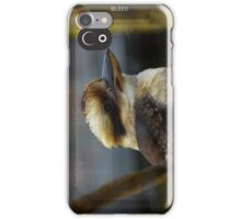 Kookaburra iPhone Case/Skin