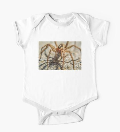 Wolf Spider One Piece - Short Sleeve