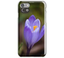 Crocus iPhone Case/Skin