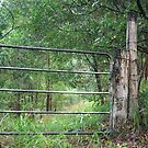 Gate To Nowhere by aussiebushstick