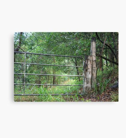 Gate To Nowhere Canvas Print