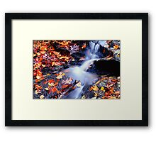 Traces Framed Print