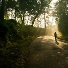 So addicted to walking and the light ! by Dinni H