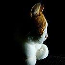 Fudge the Cat IPhone-case by Els Steutel
