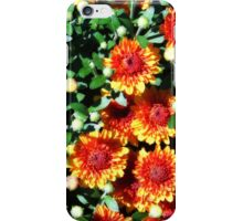 Autumn Mums iPhone Case/Skin