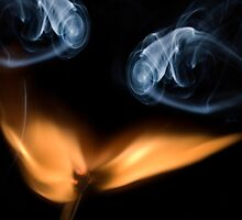 Burning match, close up by Sami Sarkis