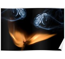Burning match, close up Poster