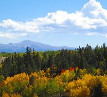 The Pikes Peak High Country by Christine Ford