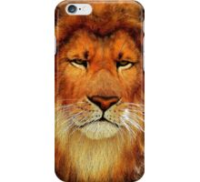 Be A Lion iPhone Case iPhone Case/Skin