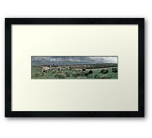 Cows - Yelland Framed Print