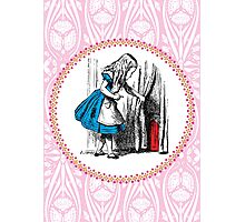 Alice in Wonderland | Alice, with Key in Hand, Pulls Back the Curtain to Find the Door to Wonderland  Photographic Print