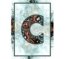 Fractal – Alphabet – C is for Complexity  Photographic Print