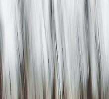 ICM - iPhone Case by Leon Ritchie
