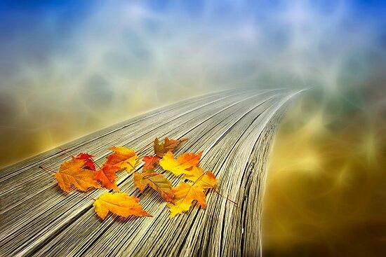 Autumn bridge to somewhere by Veikko  Suikkanen